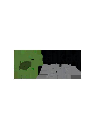 arkad_logo